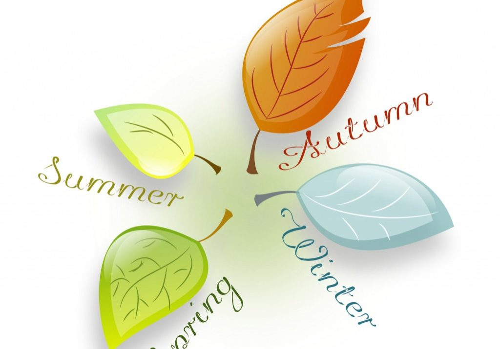 Four seasons leaves - autumn, winter, spring, summer